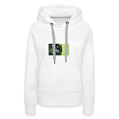 Pillow case - Women's Premium Hoodie