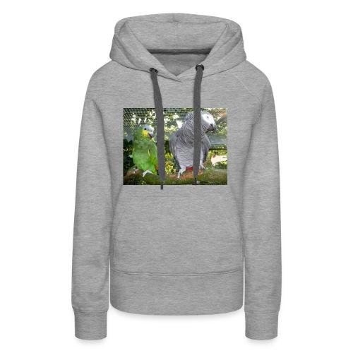 Amazone og grå - Dame Premium hættetrøje