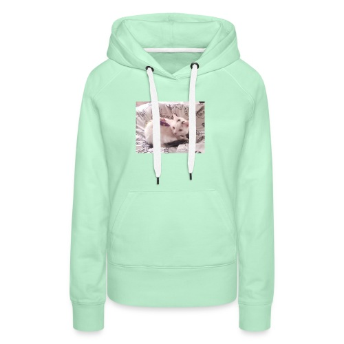 CAT SURROUNDED BY MICE AND BUTTERFLIES. - Women's Premium Hoodie