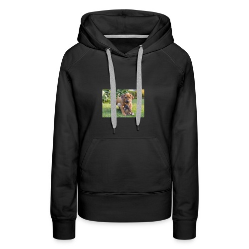 adorable puppies - Women's Premium Hoodie