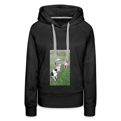 DID SOMEONE SAY SOMTHING - Women's Premium Hoodie