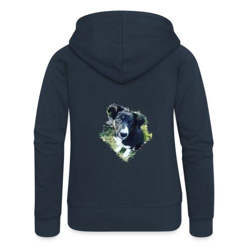 colliegermanshepherdpup - Women's Premium Hooded Jacket