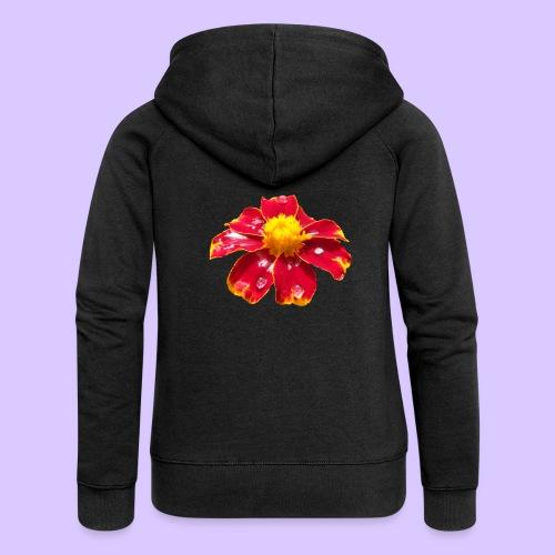 rote Ringelblume mit Regentropfen, Blume, Blüte - Frauen Premium Kapuzenjacke
