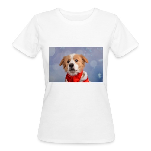 DSC_2040-jpg - Vrouwen Bio-T-shirt