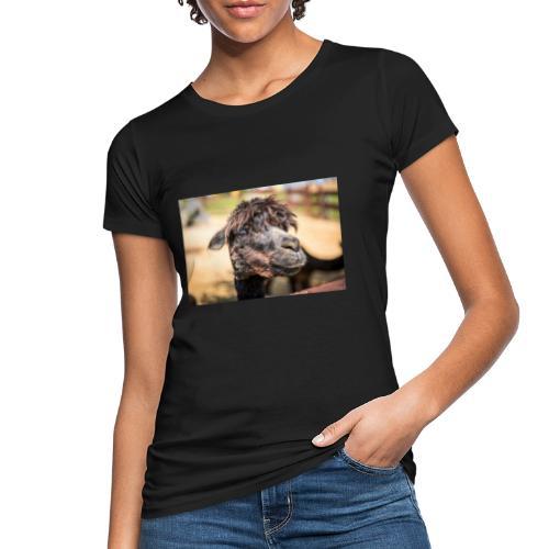 Zobori Erlebnispark in Zalaszabar [2] - Frauen Bio-T-Shirt