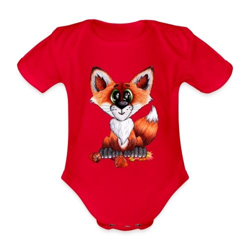 llwynogyn - a little red fox - Vauvan lyhythihainen luomu-body