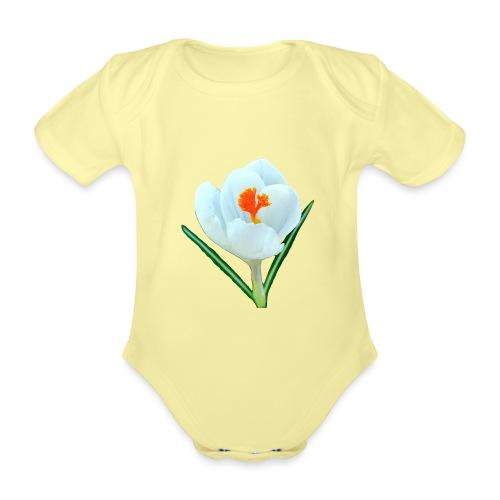TIAN GREEN - Krokuss 2020 - Baby Bio-Kurzarm-Body