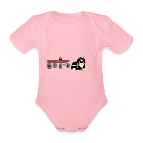 bernerdrag hona - Ekologisk kortärmad babybody
