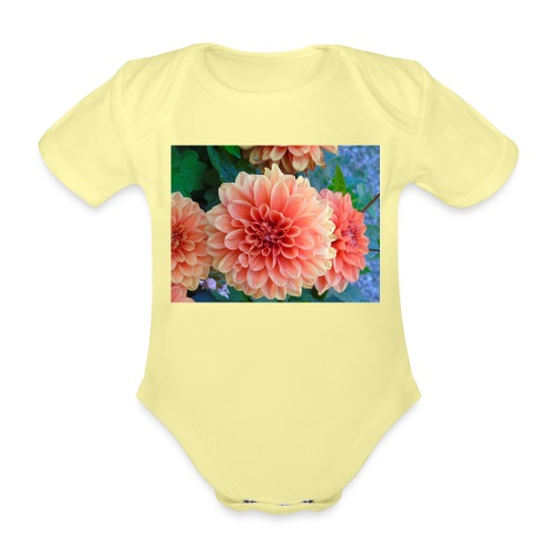 A chrysanthemum - Organic Short-sleeved Baby Bodysuit