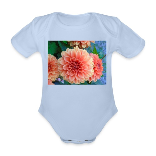 A chrysanthemum - Organic Short-sleeved Baby Bodysuit