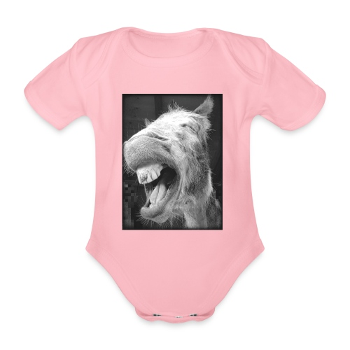 lachender Esel - Baby Bio-Kurzarm-Body
