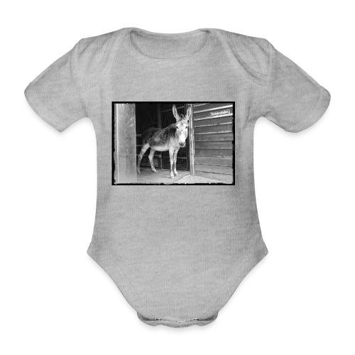 Zickenstube Esel - Baby Bio-Kurzarm-Body