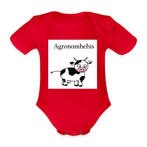 agronombebis jpg - Ekologisk kortärmad babybody