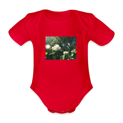 The Flower Shirt - Æbleblomster - Kortærmet babybody, økologisk bomuld