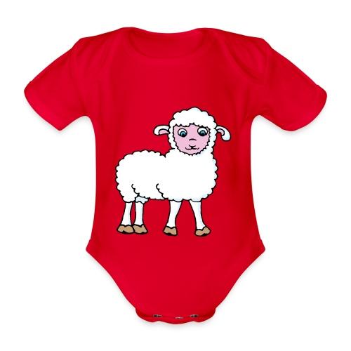 Minos le petit agneau - Body Bébé bio manches courtes