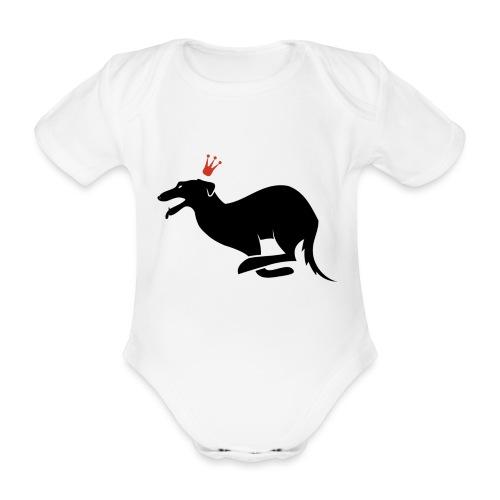 Galgo rey - Body orgánico de maga corta para bebé
