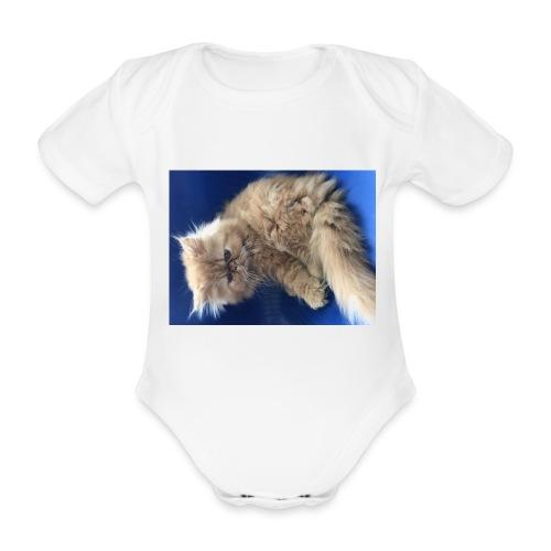 IMG 8771 - Body ecologico per neonato a manica corta