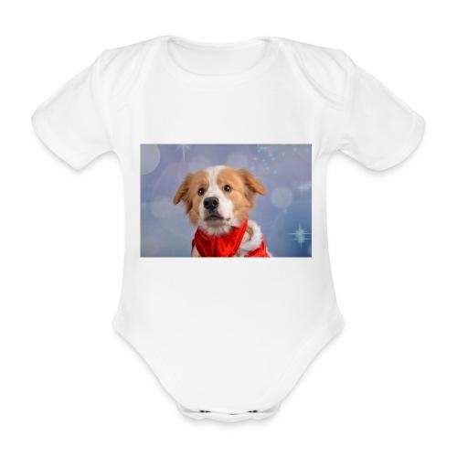 DSC_2040-jpg - Baby bio-rompertje met korte mouwen
