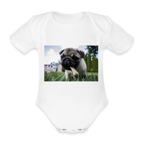 puppy dog - Baby Bio-Kurzarm-Body