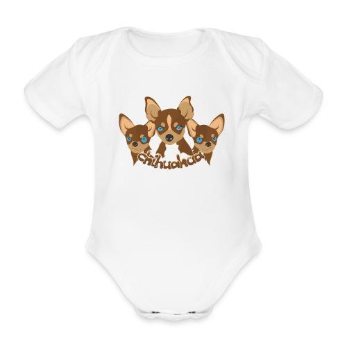 Chihuahua - Body ecologico per neonato a manica corta