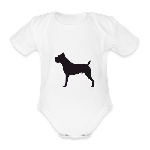 Cane Corso Italiano - Body orgánico de maga corta para bebé