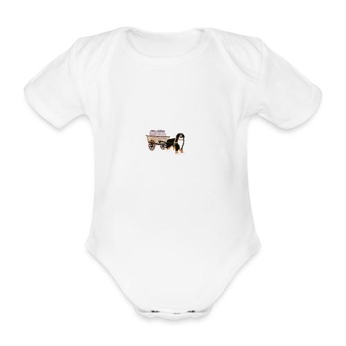 bernerhane drag - Ekologisk kortärmad babybody