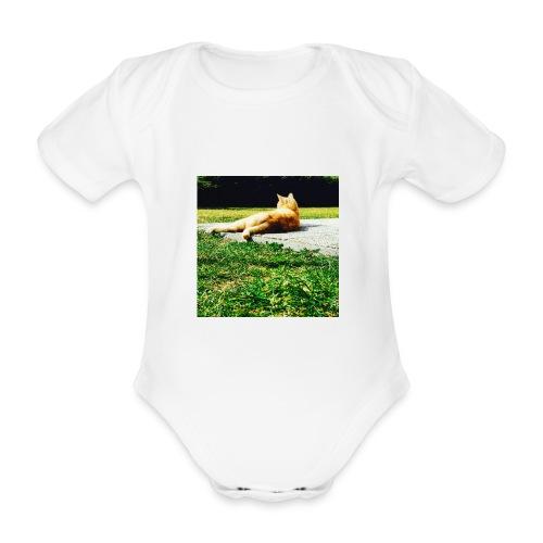 DCF91892 59C9 43B0 9600 907255572290 - Baby Bio-Kurzarm-Body