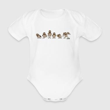Eulen - Brown - Baby Bio-Kurzarm-Body