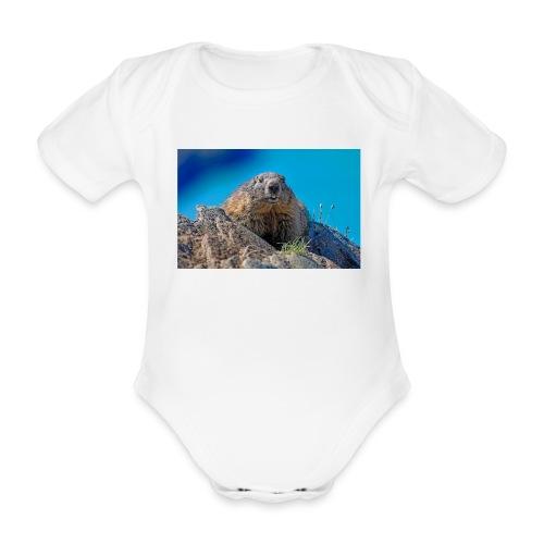 Murmeltier - Baby Bio-Kurzarm-Body