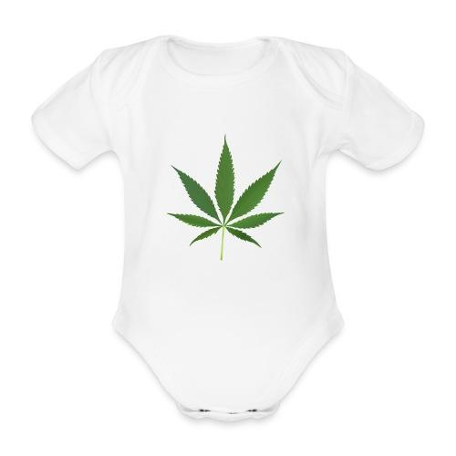 2000px-Cannabis_leaf_2 - Kortærmet babybody, økologisk bomuld