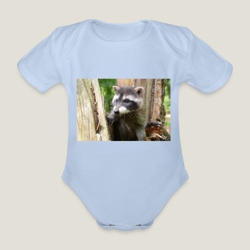 Junger Waschbär - Baby Bio-Kurzarm-Body