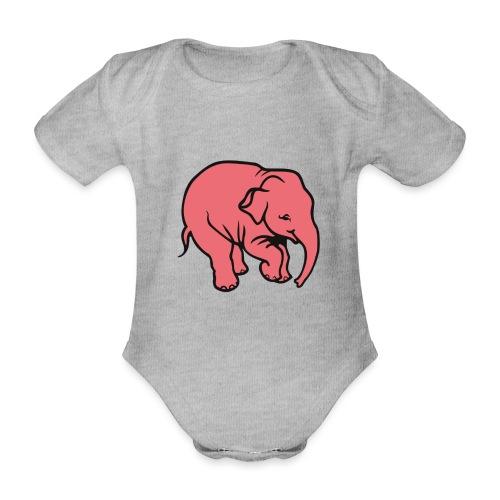 DT olifant - Baby bio-rompertje met korte mouwen