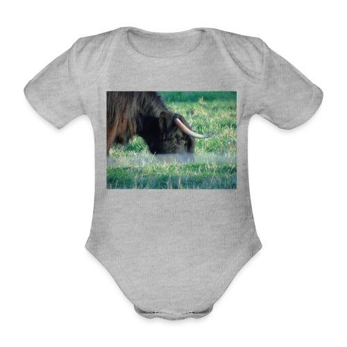 A highland cow - Organic Short-sleeved Baby Bodysuit