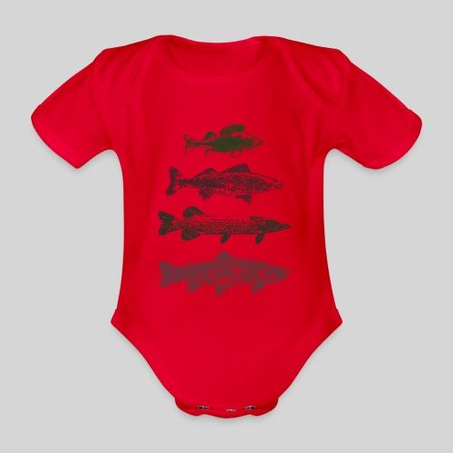 Lake - Vauvan lyhythihainen luomu-body