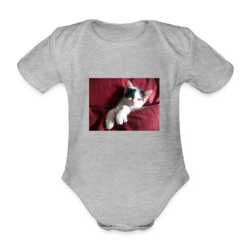 Katze in rot - Baby Bio-Kurzarm-Body