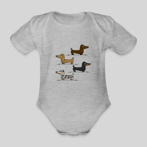 Dachshunds - Organic Short-sleeved Baby Bodysuit