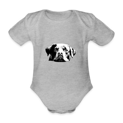 Rottweiler - Baby Bio-Kurzarm-Body