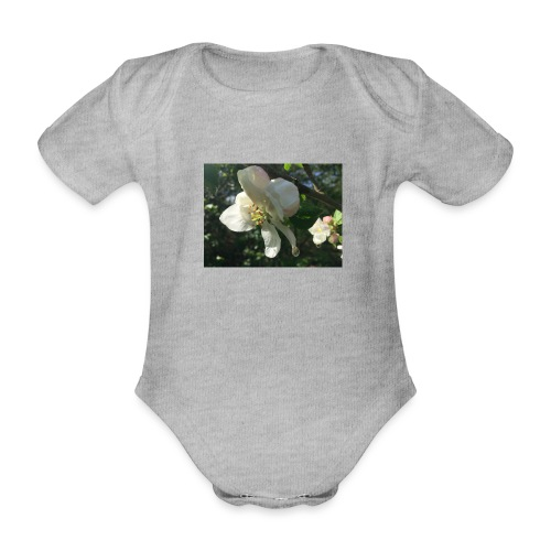 The Flower Shirt - Æble - Kortærmet babybody, økologisk bomuld