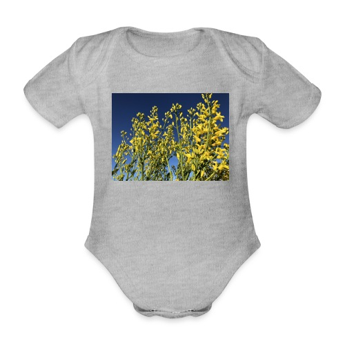Green Cabbage in the Sky - Kortærmet babybody, økologisk bomuld
