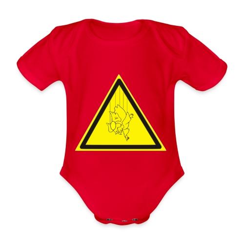 pericolo-caduta-santi - Body ecologico per neonato a manica corta
