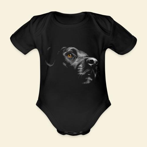 Labrador - Baby Bio-Kurzarm-Body