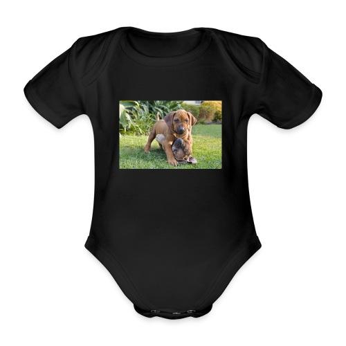 adorable puppies - Organic Short-sleeved Baby Bodysuit