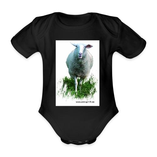 Gemaltes Entrup Schaf - Baby Bio-Kurzarm-Body