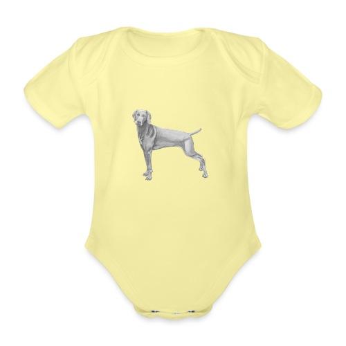 weimaraner - Kortærmet babybody, økologisk bomuld