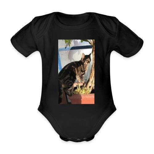 IMG 6795 - Body ecologico per neonato a manica corta