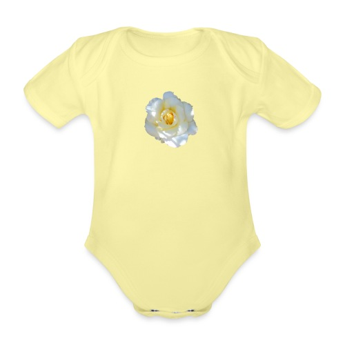 A white rose - Organic Short-sleeved Baby Bodysuit