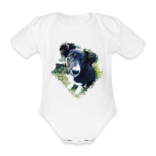 colliegermanshepherdpup - Organic Short-sleeved Baby Bodysuit