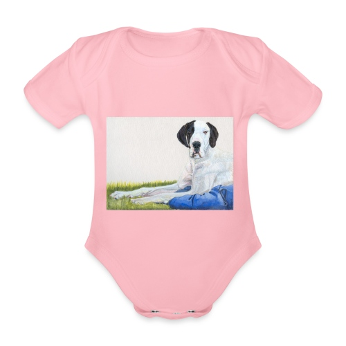 Grand danios harlequin - Kortærmet babybody, økologisk bomuld