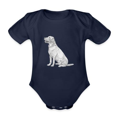 labrador Retriever Gul - Kortærmet babybody, økologisk bomuld