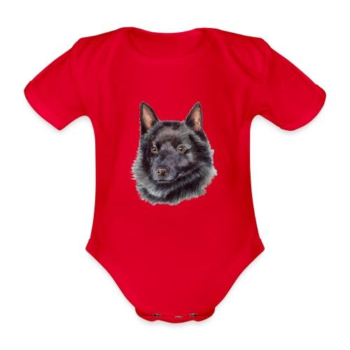 schipperke - akv - Kortærmet babybody, økologisk bomuld